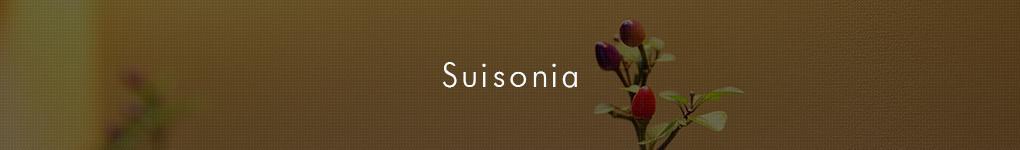 Suisonia
